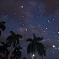 Released a BLESSED EARTH CRYSTAL in the streets of Miami and our daughter Indigo captured the orbs in the night sky