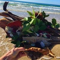 Australia - Marcus Beach - 2016