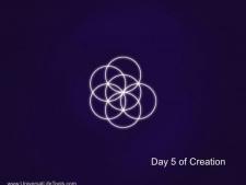 Day-5-Creation