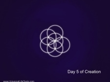 Day-5-Creation