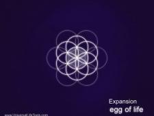 Egg-of-Life