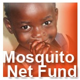 mosquito_LITA