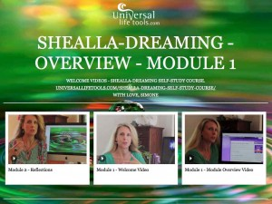 Shealla-Mod1-reflections-new