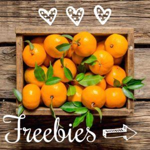 Freebies Universal Life Tools lr