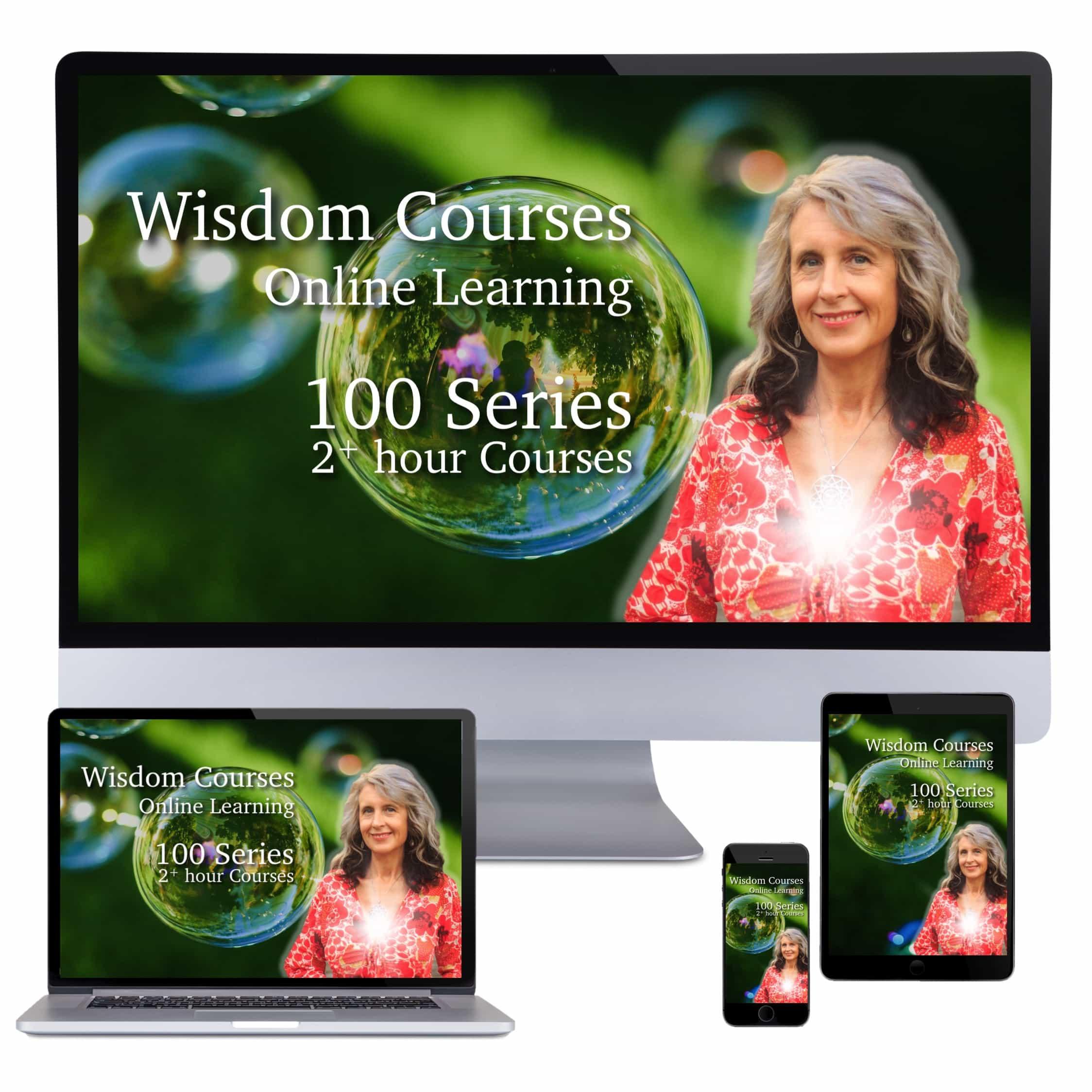 Wisdom Courses eShop 100