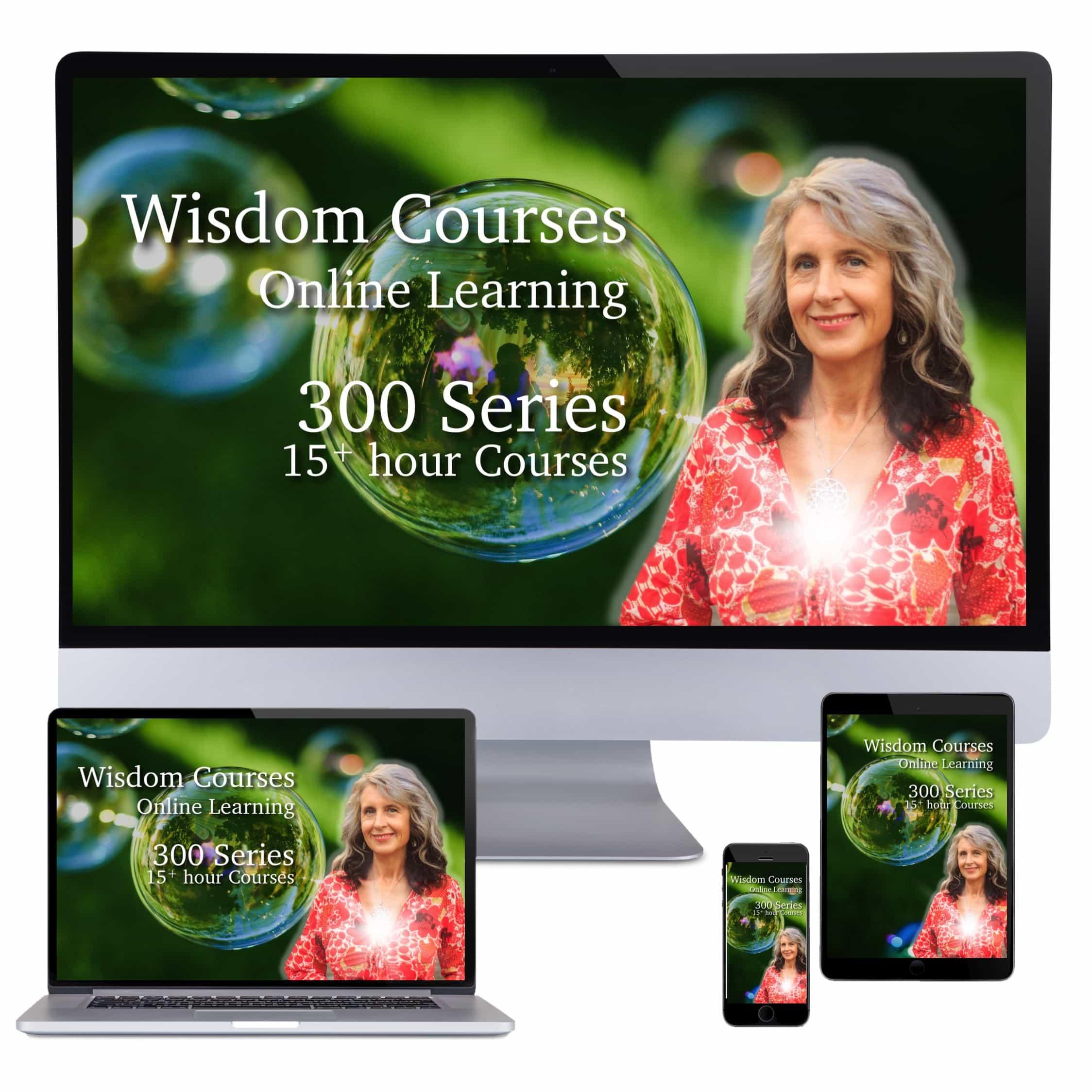 Wisdom Courses eShop 300