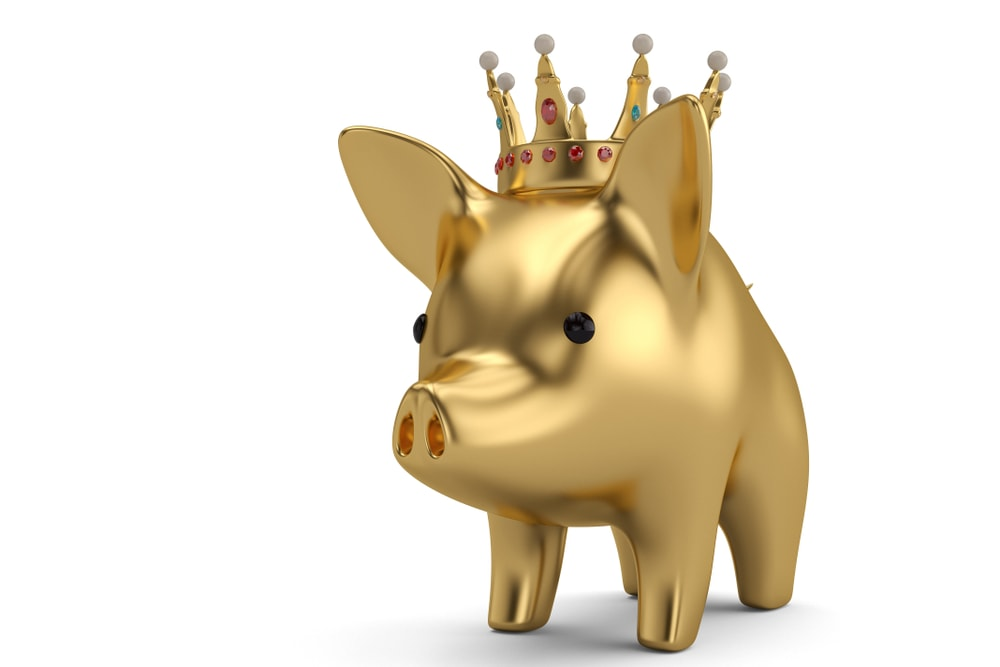 2019 Year Of The Golden Yin Earth Pig