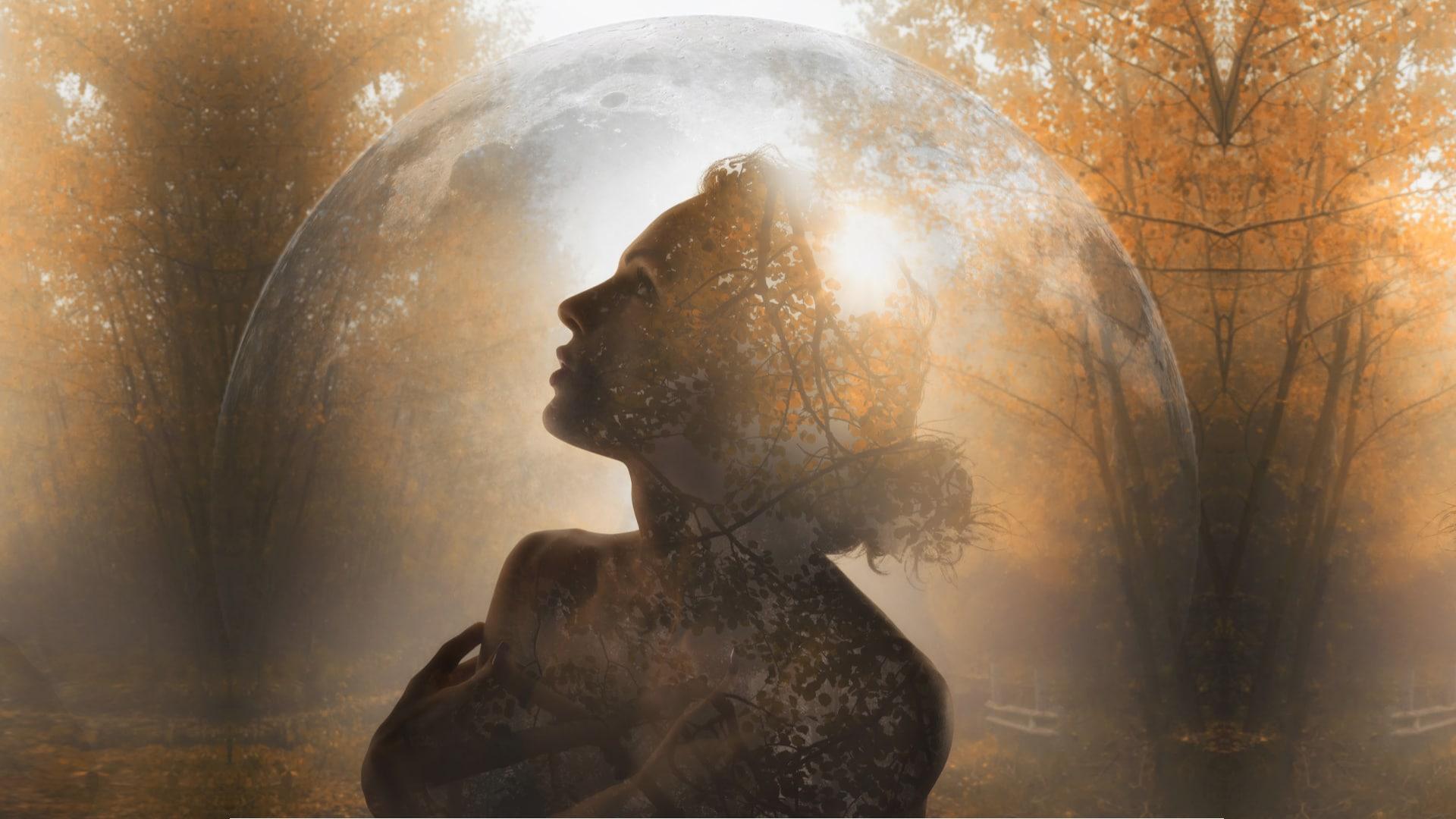 Radiance Lightbrary - Simone Matthews