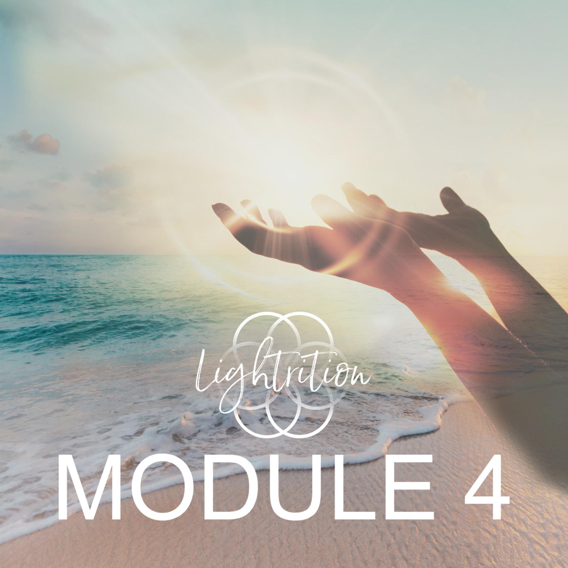 LYL Module 4 nw3