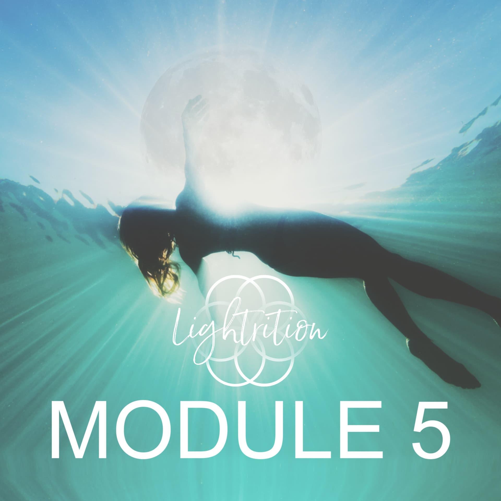 LYL Module 5 sq nw