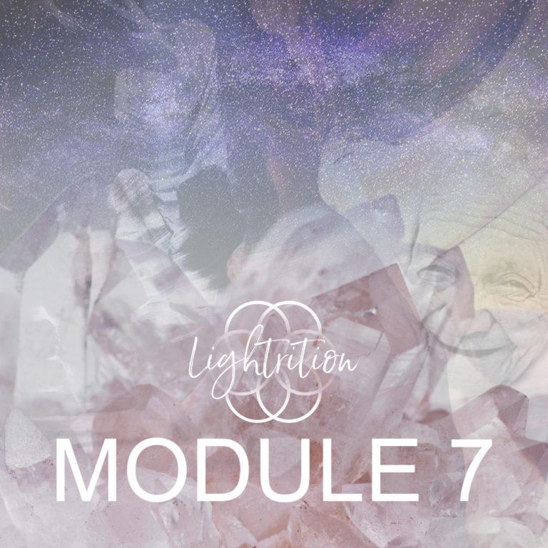 LYL Module 7 sq nw 777