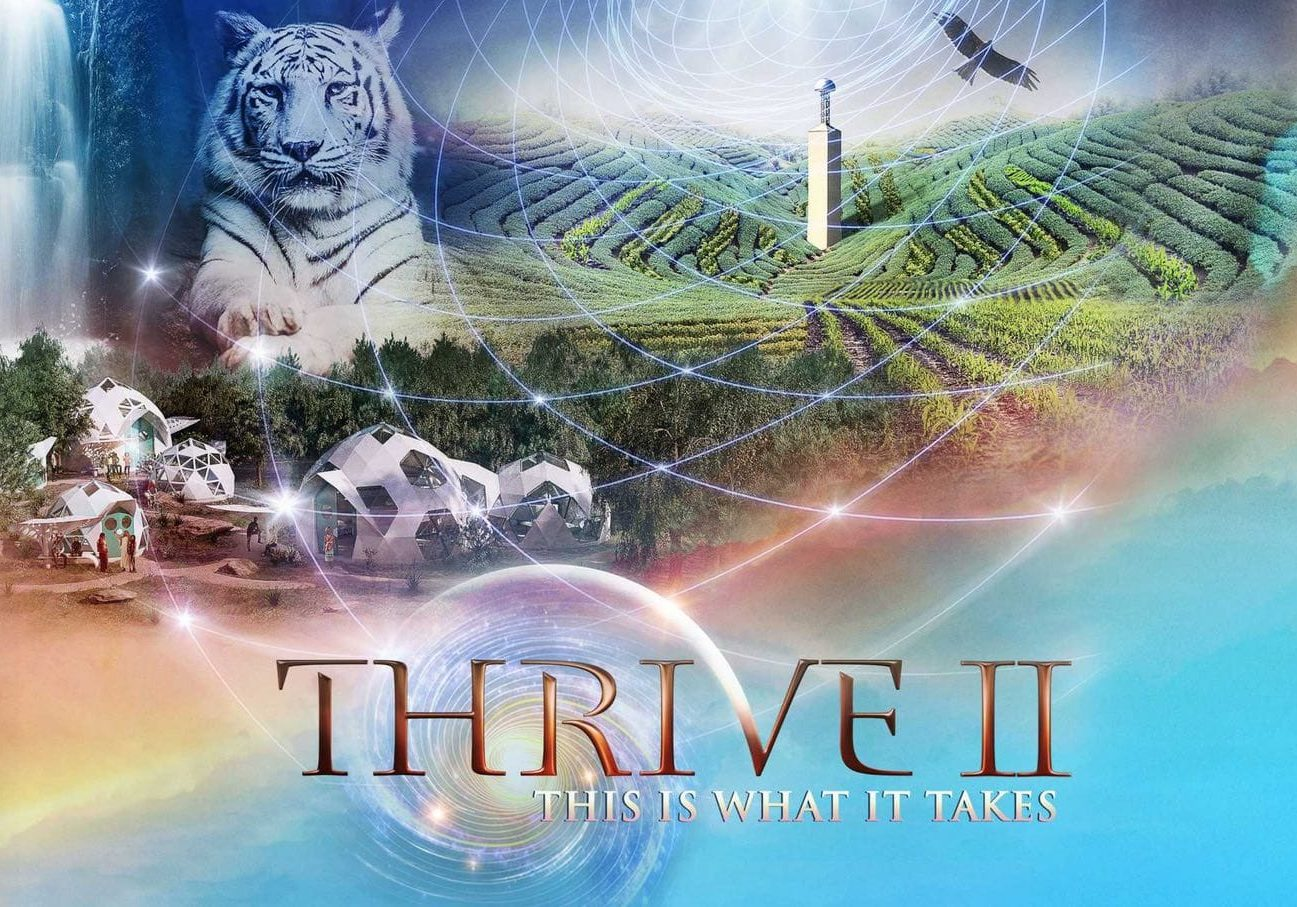 Thrive on this is what it takes